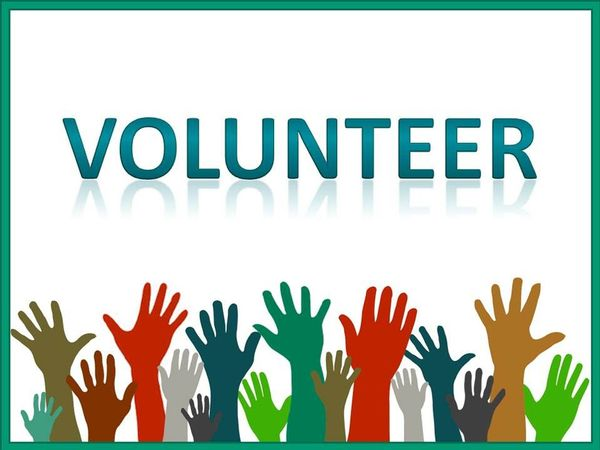 Superior Make A Difference   Become A Vera House Volunteer!
